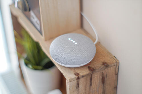 Google Home Voicebot